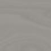 317-Bouleau gris
