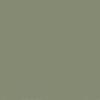 48-Lichen