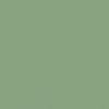 25-Vert Menthe